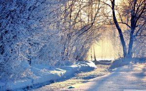 darinka tuina čas zime